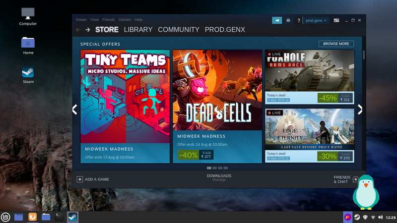 download games from steam on linux mint 20