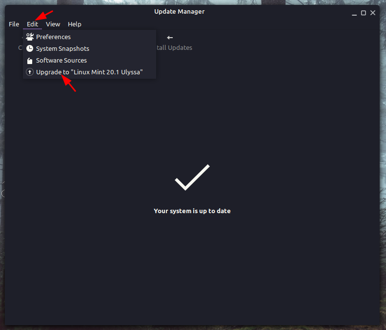 upgrade to linux mint 20.1